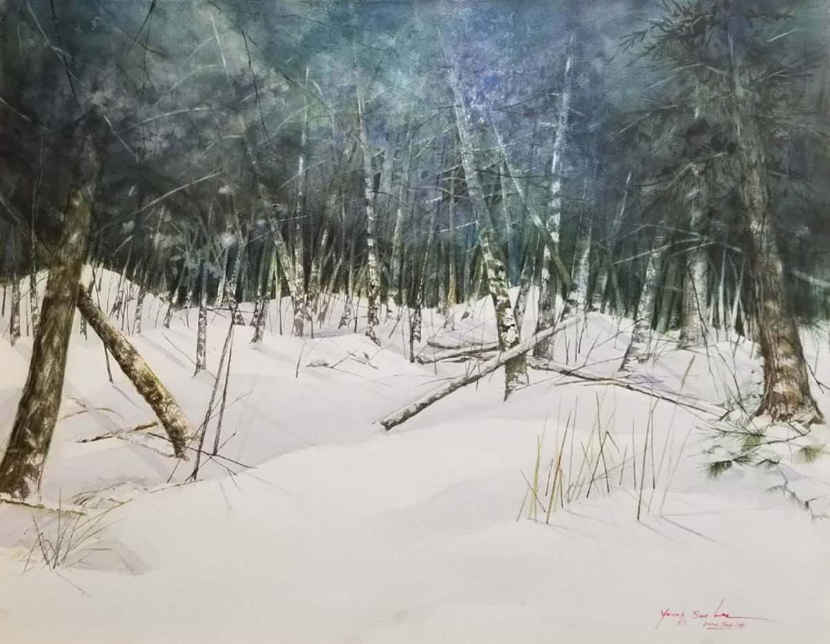 Memories in the snow forest